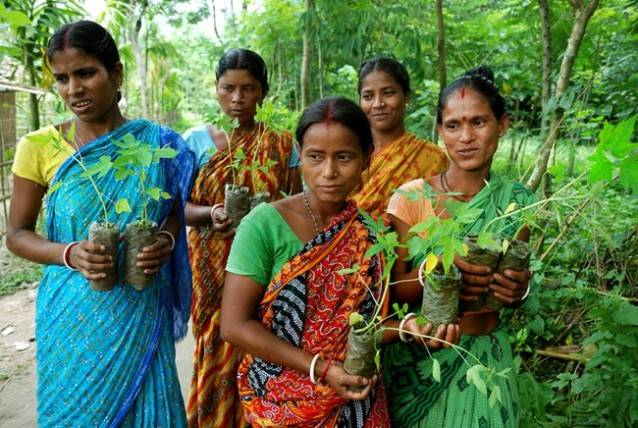 Women-with-saplings-West-Bengal-India.jpg.650x0_q85_crop-smart-638x428.jpg