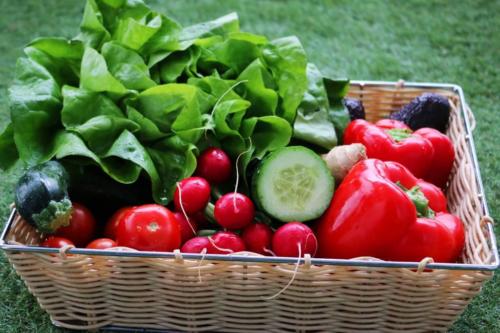 vegetables-3928390_1920.jpg