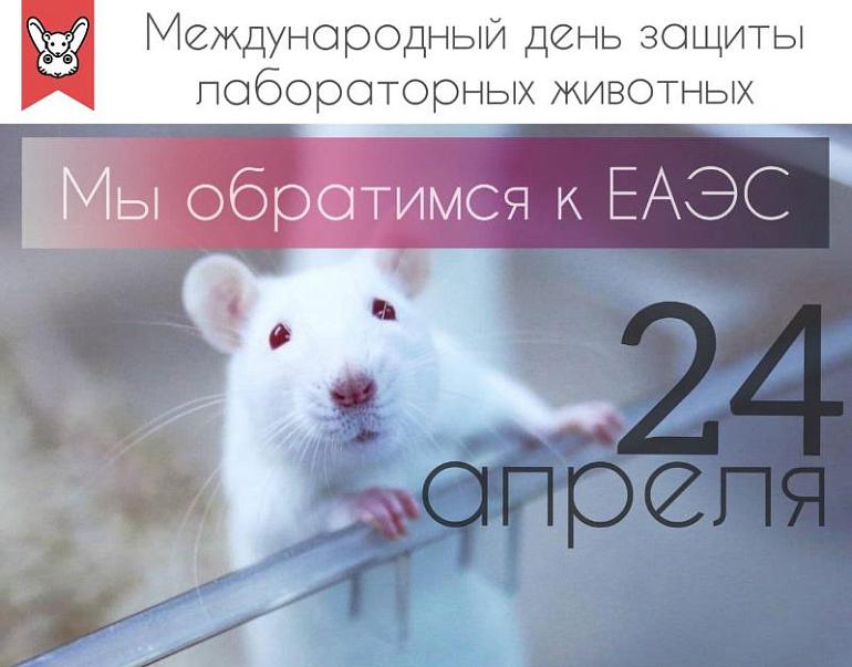 Международная акция за запрет тестирования косметики на животных пройдет 24 апреля